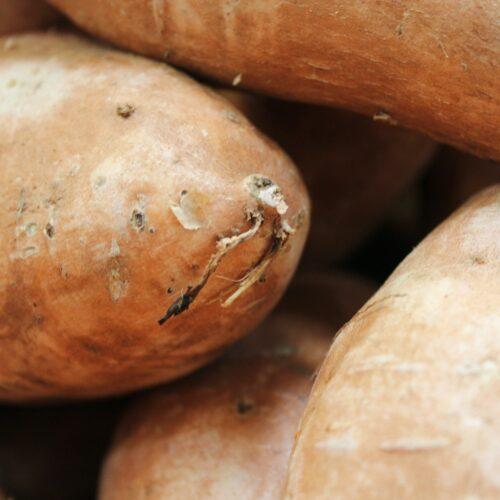 Sweet potato roasted average-noodle-_zK0HZpldKg-unsplash
