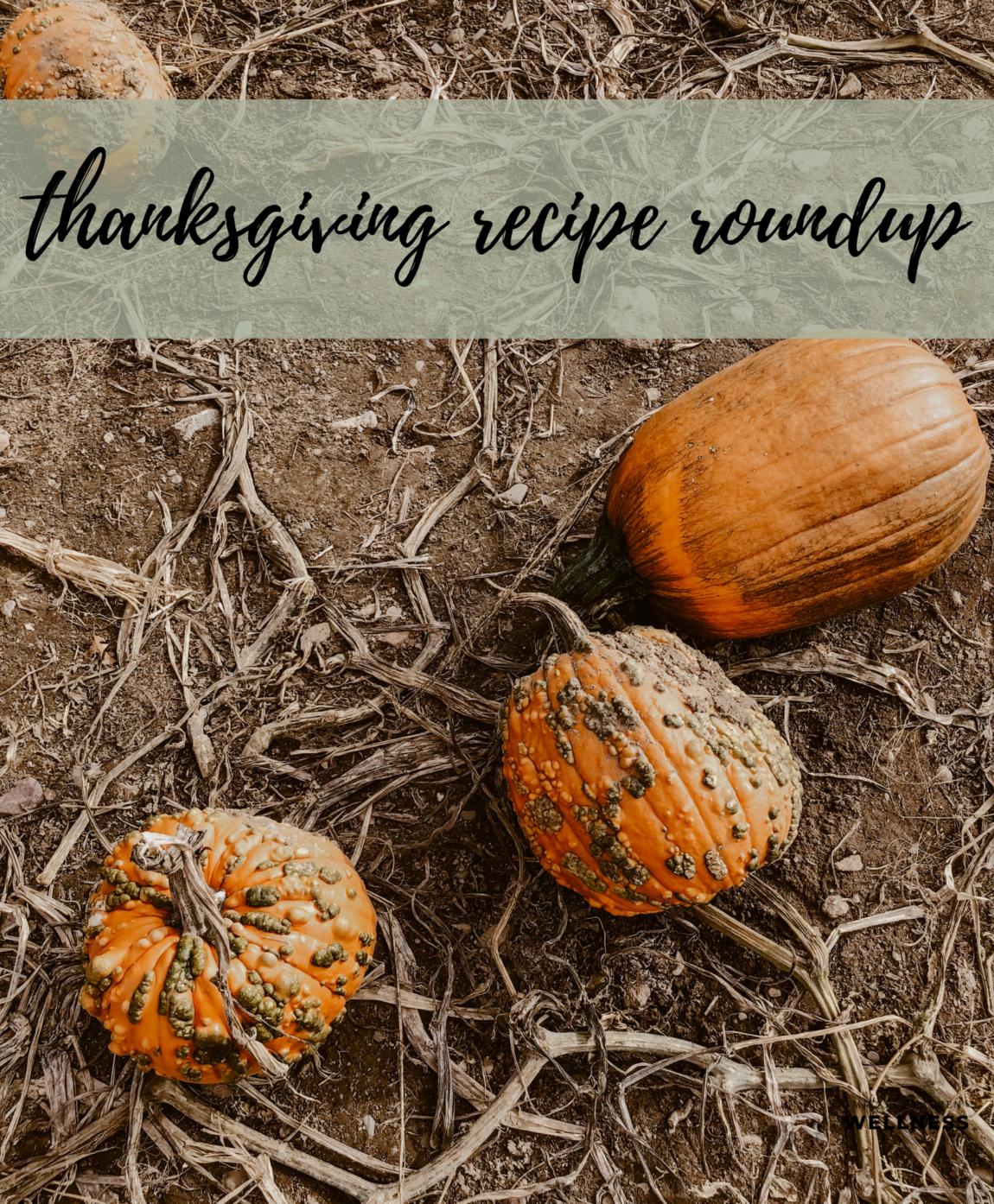 Mikaela Lauren Wellness Thanksgiving Recipe Roundup